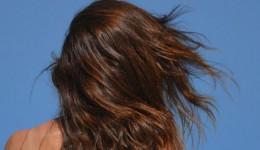 髪がなびいている女性の後姿